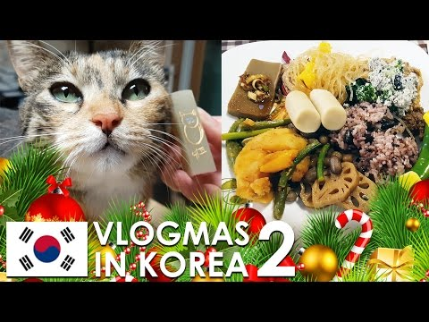 VLOGMAS IN KOREA 🇰🇷 🎄 #2 - Stamp making in Insadong, Vegan Buffet, and KBS World Radio Show