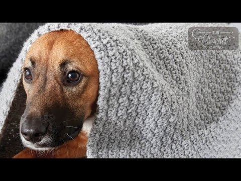 How to Crochet Blanket for Dogs