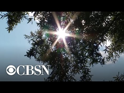 Government Agencies Say 2019 Was 2nd Warmest Year On Record