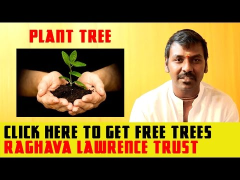 Want Free Trees From Raghava Lawrence Trust? Watch Video | Latest Tamil News | Kollywood