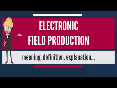 What is ELECTRONIC FIELD PRODUCTION? What does ELECTRONIC FIELD PRODUCTION mean?