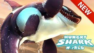 Hungry Shark World | NEW KILLER WHALE SHARK GAMEPLAY!