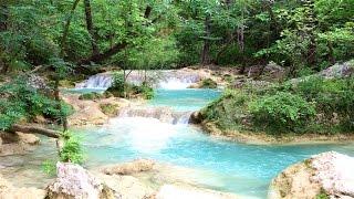 1 H Relaxation - bruit de la nature, cascade - Forêt, chants d'oiseaux -  spa