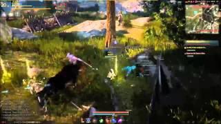 Black Desert Online Tamer Gameplay
