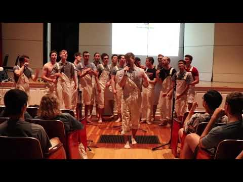 Haverford College 'Ford S-Chords - Dirty Diana/Love Lock Down