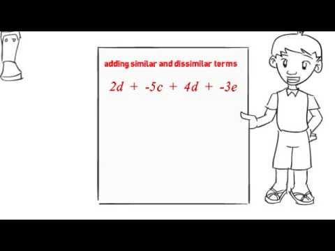 Algebra 1 lesson 2 (NEW)