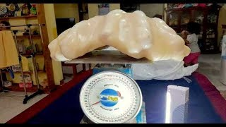 Video Fisherman Unknowingly Keeps Giant $100 Million Pearl Under His Bed For 10 Years download MP3, 3GP, MP4, WEBM, AVI, FLV Desember 2017