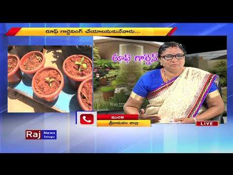 Terrace Gardening Tips - Meet Garden Designer Leena Nair | Raj News Telugu