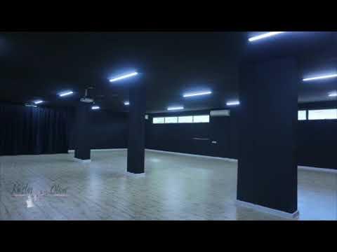 Arts Consultancy: Past project  Black Box