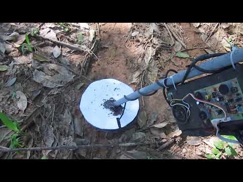 Find gold with a homemade detector