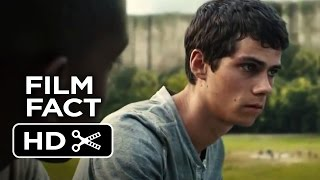 Ver  The Maze Runner Film Fact (2014) Dylan O'Brien Dystopian Movie HD