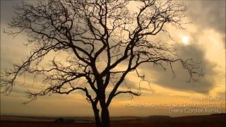 William Orbit - Ravel's Pavane Pour une Infante Défunte (Ferry Corsten Remix) FULL