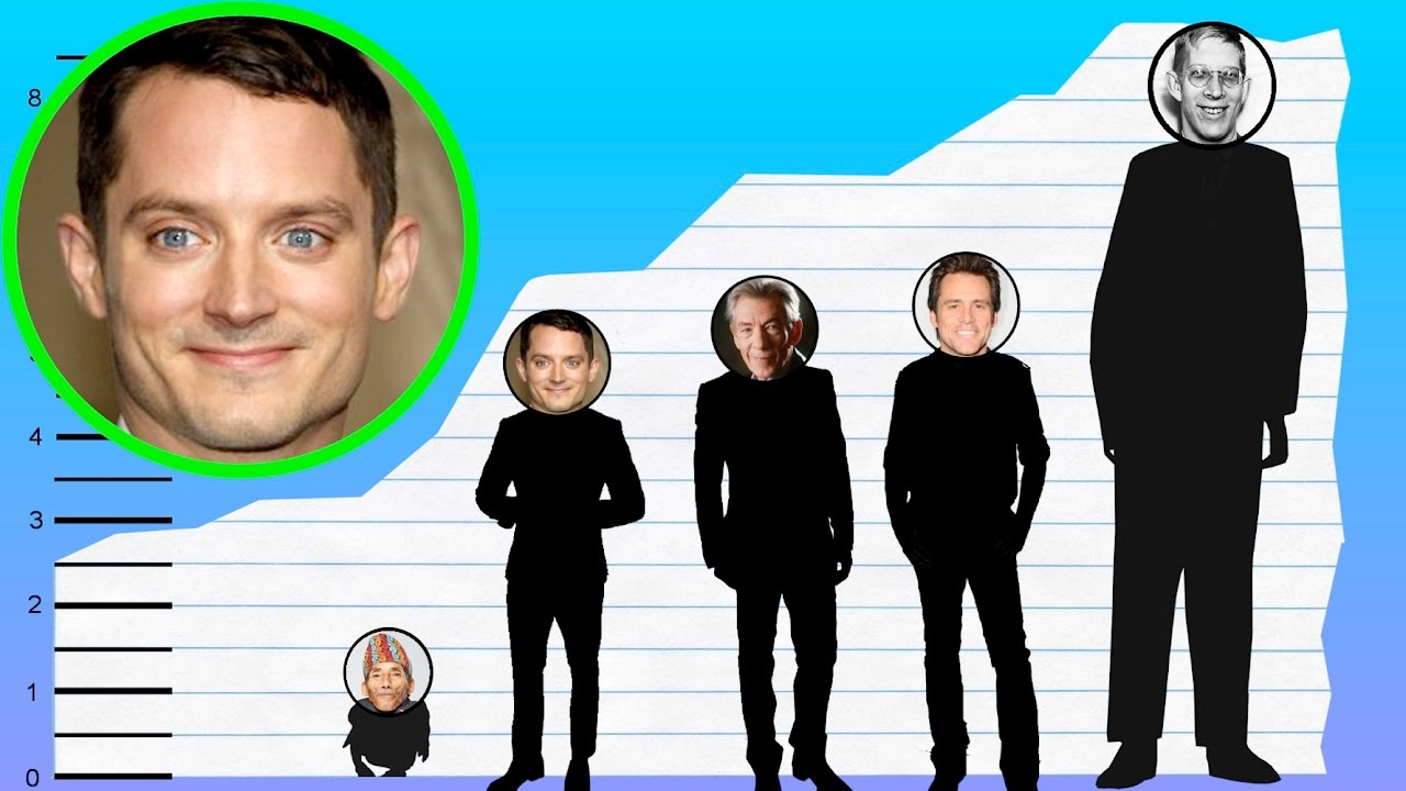 How Tall Is Elijah Wood  Height Comparison  YouTube