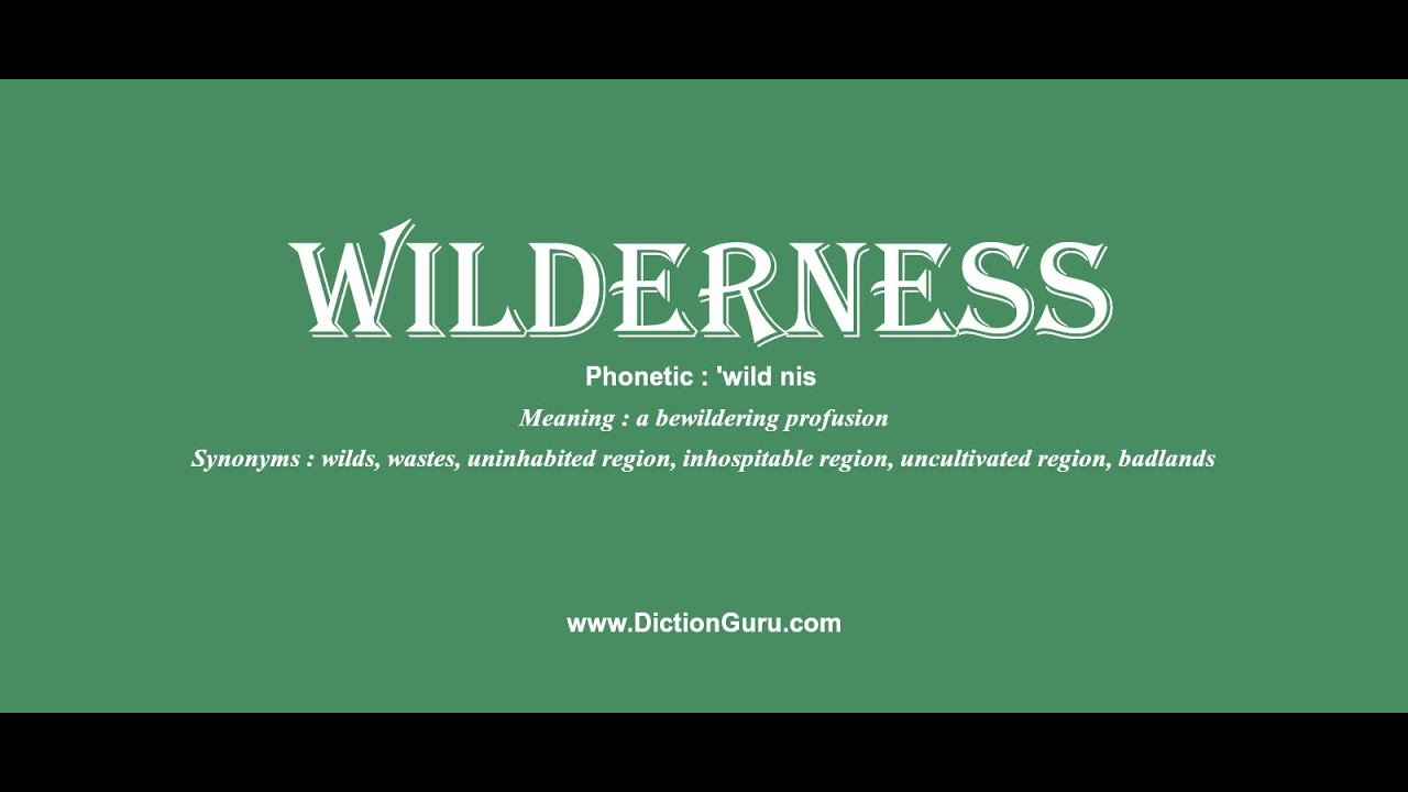 wilderness: How to pronounce wilderness with Phonetic and Examples