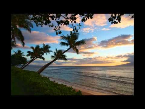 Maui Holiday