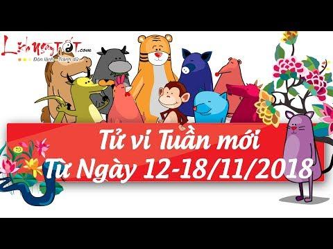 Xem tử vi hàng ngày-Tử vi tuần mới từ ngày 12 tháng 11 đến ngày 18 tháng 11 năm 2018 của 12 con giáp