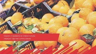 Сирия отправила в Севастополь первую партию апельсинов