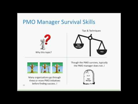Pmo Manager Survival Skills