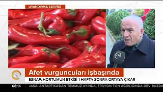 Antalya'da hortum sornası fırsatçılar ortaya çıktı