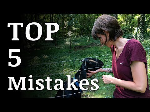 Top 5 MISTAKES New Homesteaders Make - Collaboration