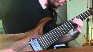 Cryptopsy - Benedictine Convulsions Guitar Cover
