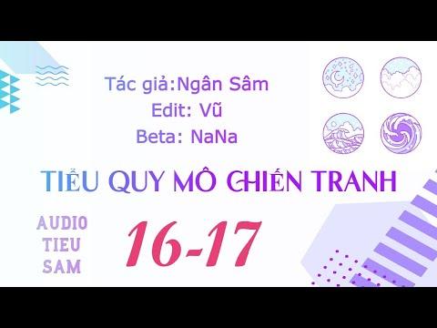 [AUDIO ĐAM MỸ] Tiểu Quy Mô Chiến Tranh C16 - C17