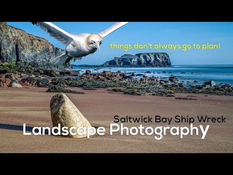 Landscape Photography | Saltwick Bay Shipwreck + BIRD!