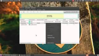 Make a partition in Ubuntu!