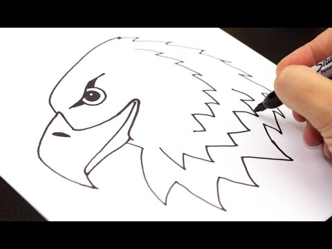 How to draw an Eagle (easy) - YouTube