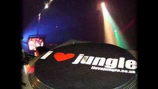 Junglized - Album Sampler - Old Skool Jungle