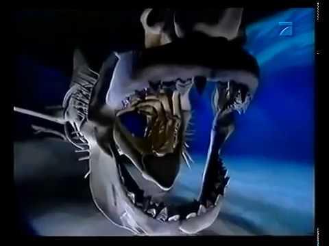 Film Monsters der Meere - Megalodon  Doku