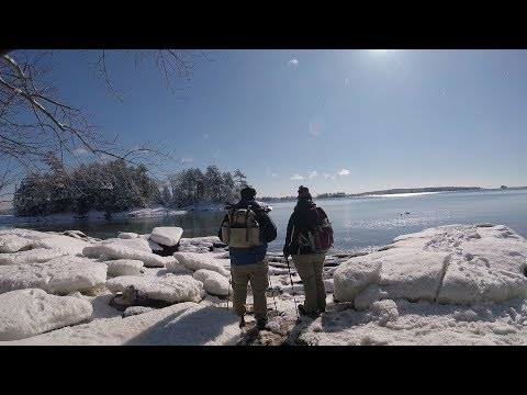Snowy Coastal Hike | Wolf's Neck Woods State Park Maine