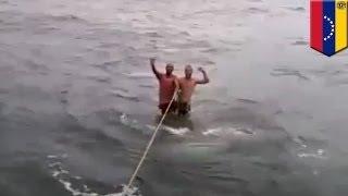 Два идиота катаются на акуле
