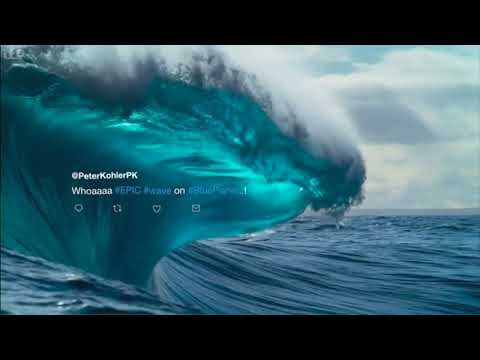 Blue Planet II Plastic Pollution Awareness 2018