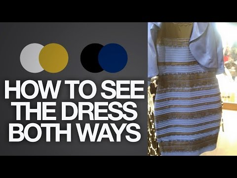 How to see The Dress BOTH ways (Black & Blue or White & Gold) | Toy Life