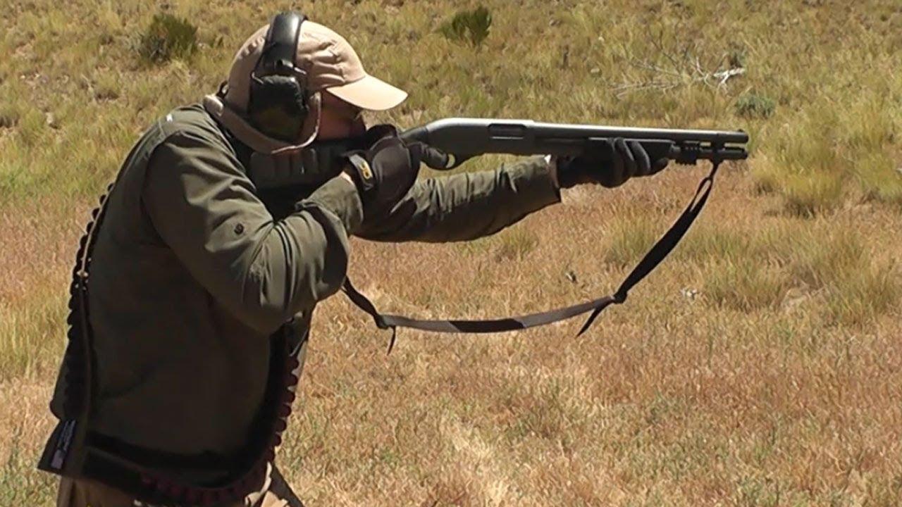 Amazon.com : Shotgun Bandoleer - Holds 50 Shells - 12 or 16 or 20 ...