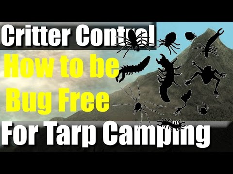 VR: How to Tarp Camp and Keep out the Critters | RevHiker