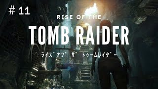 RISE OF THE TOMB RAIDER #11