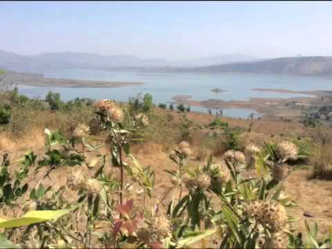 FARM HOUSE LAND FOR SALE IN PUNE PAVANA DAM VIEW