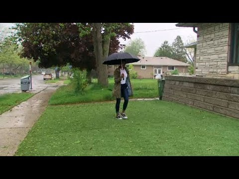 This homeowner is in a turf war with City of Toronto over her artificial lawn
