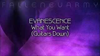 Evanescence - What You Want (Guitars Down) by FallenEvArmy