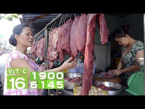 Giá thịt bò tăng mạnh: Có nên đổ xô sang nuôi bò?   VTC16