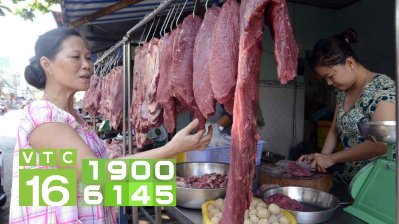 Giá thịt bò tăng mạnh: Có nên đổ xô sang nuôi bò? | VTC16