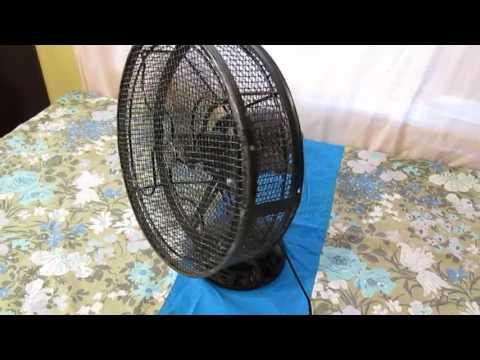 Shoo Fly Fan 003 Doovi