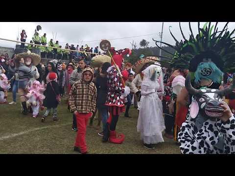 Carnaval Carpinteros Hidalgo Martes 2018 (3)