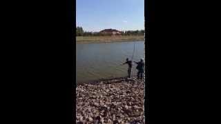 Рыбалка на Ишиме.