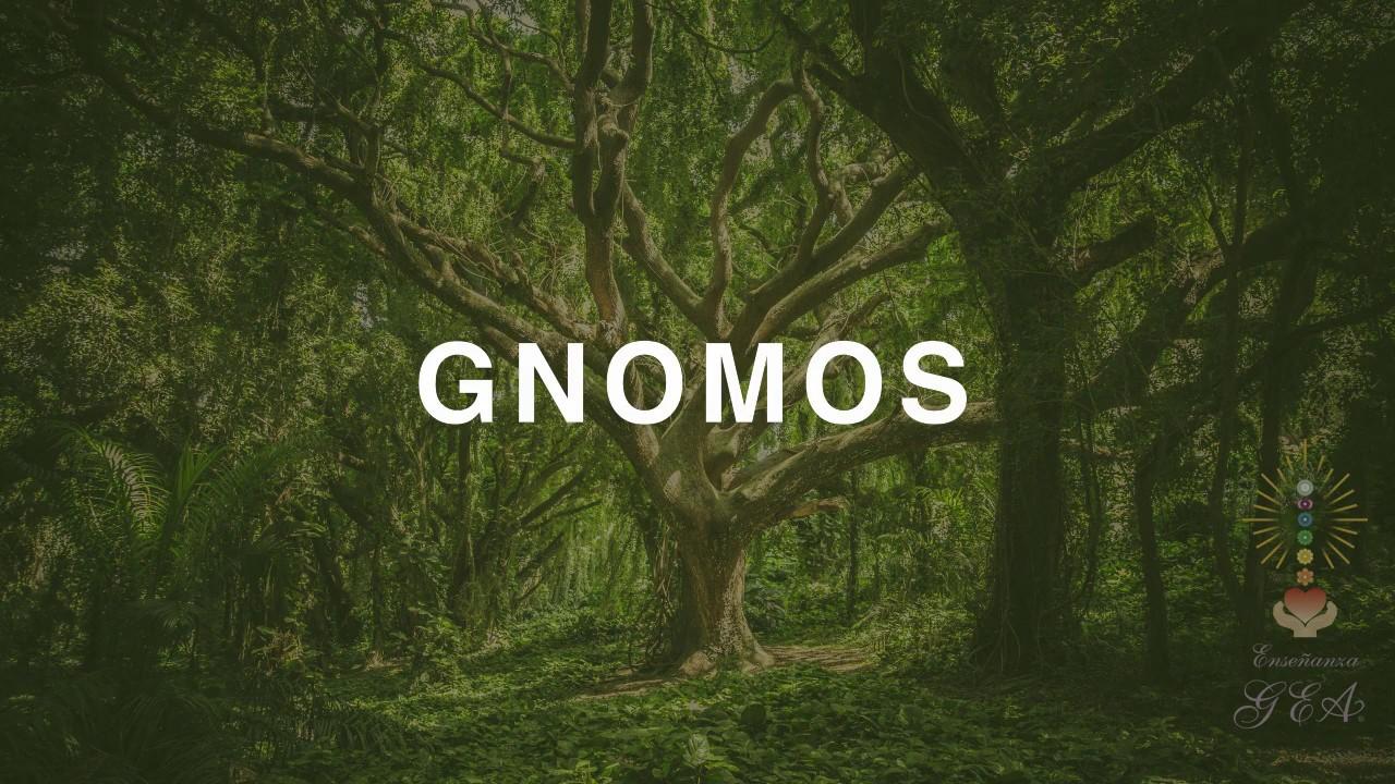 Meditación por los Seres Elementales, Los Gnomos.