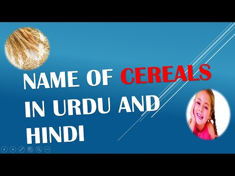 Learn Name of Cereals in Urdu and Hindi Video 9 of 10 ...