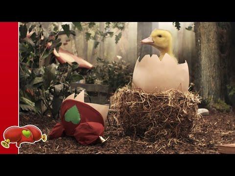 Kabouter Plop - Plop en het ei