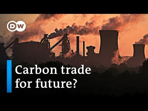 Carbon trade: Solution to the climate crisis? | DW News